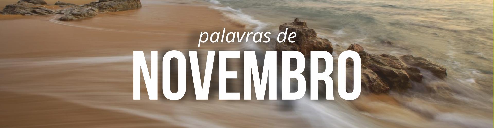 banner-novembro